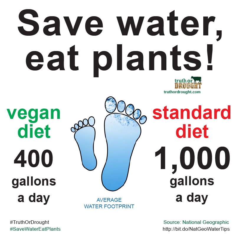 Save water, eat plants